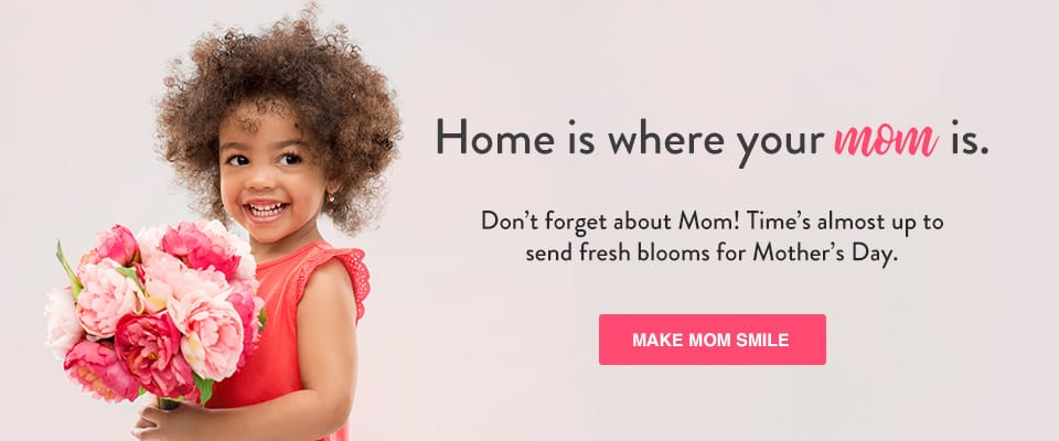 Flower Delivery In Silver Spring Image