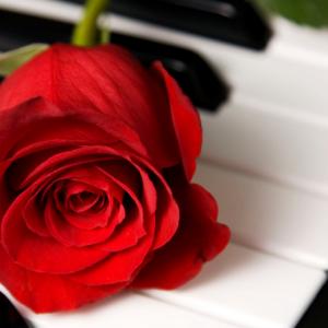 Love Story Florist - Real Local Florist