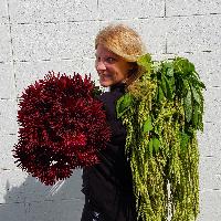 Heather DeKok Floral Design - Real Local Florist
