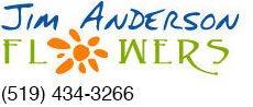Jim Anderson Logo