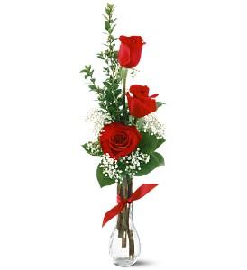 3_Red_rose_vase_uycgl3.jpg
