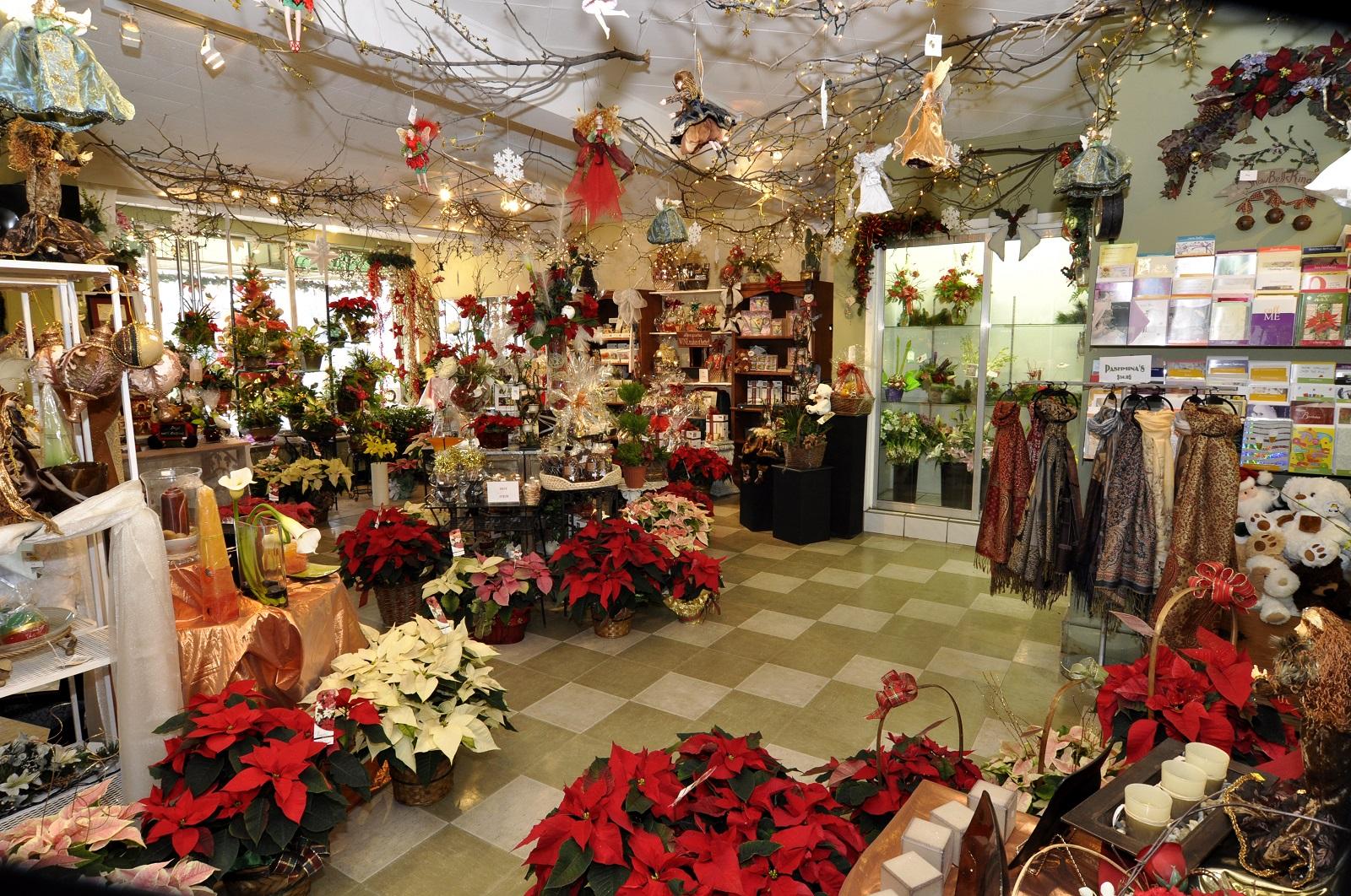 Christmas_at_Dobbie_s_Charlies_Pics_010_xjuj50.jpg