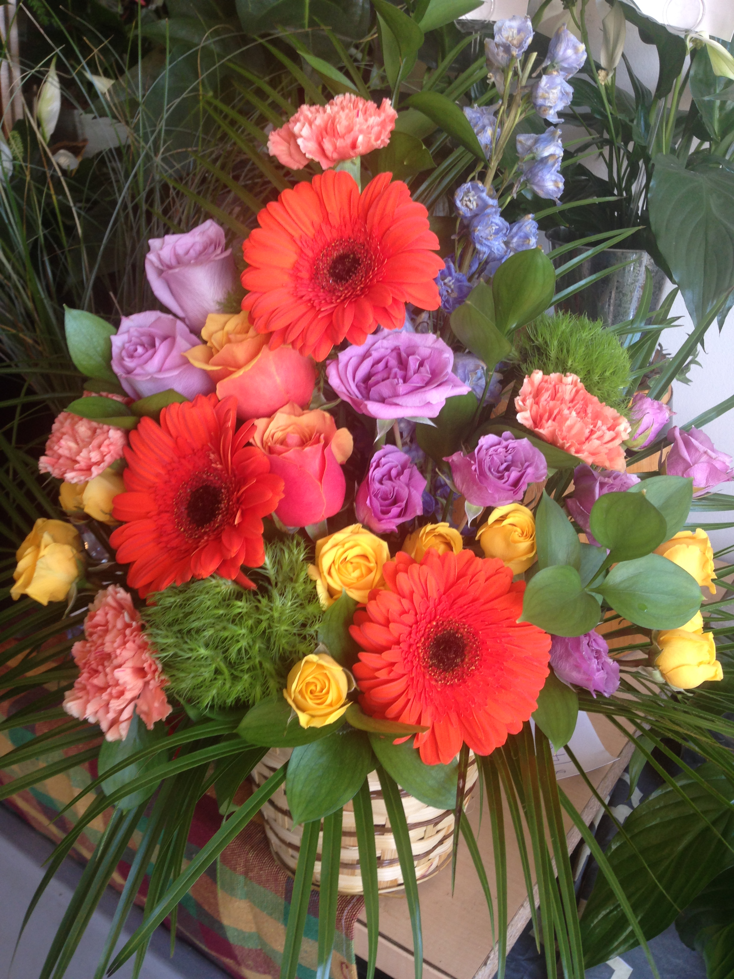 flowers_and_peggys_pics_001_emdrfo.jpg
