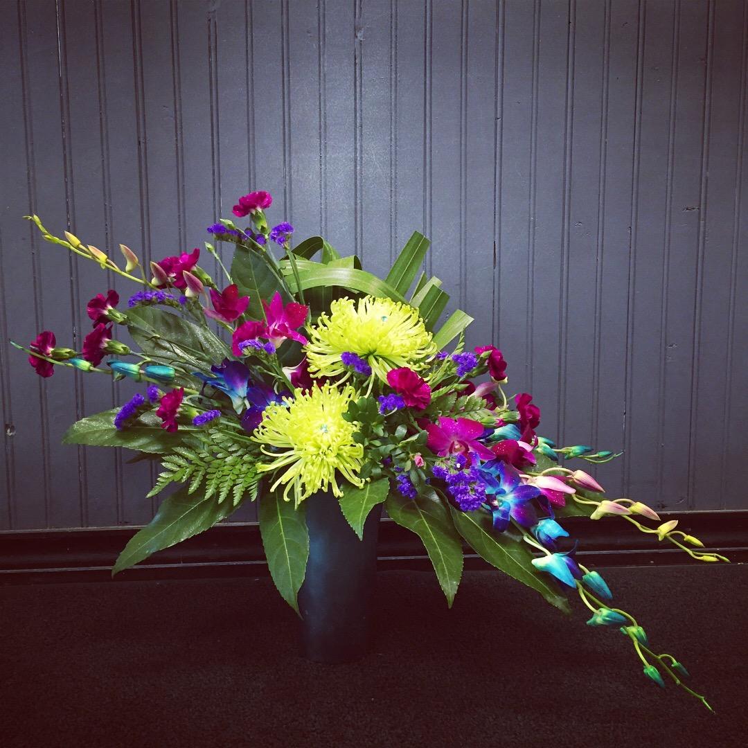 orchidsandspiders_qx5wvg.jpg