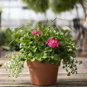 patio_pot_image_bdmmr1.jpg
