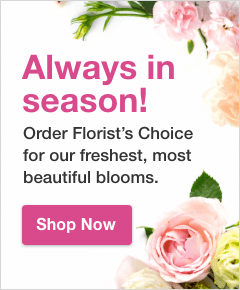 Floral background with text: Always in season! Order Florist's Choice for our freshest, most beautiful blooms.