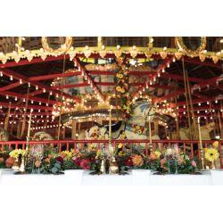 Carousel museum wedding