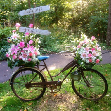 bike_otbupq.jpg