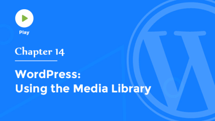 Explore Media Library in WordPress