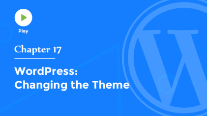 How to Change the Theme in WordPress
