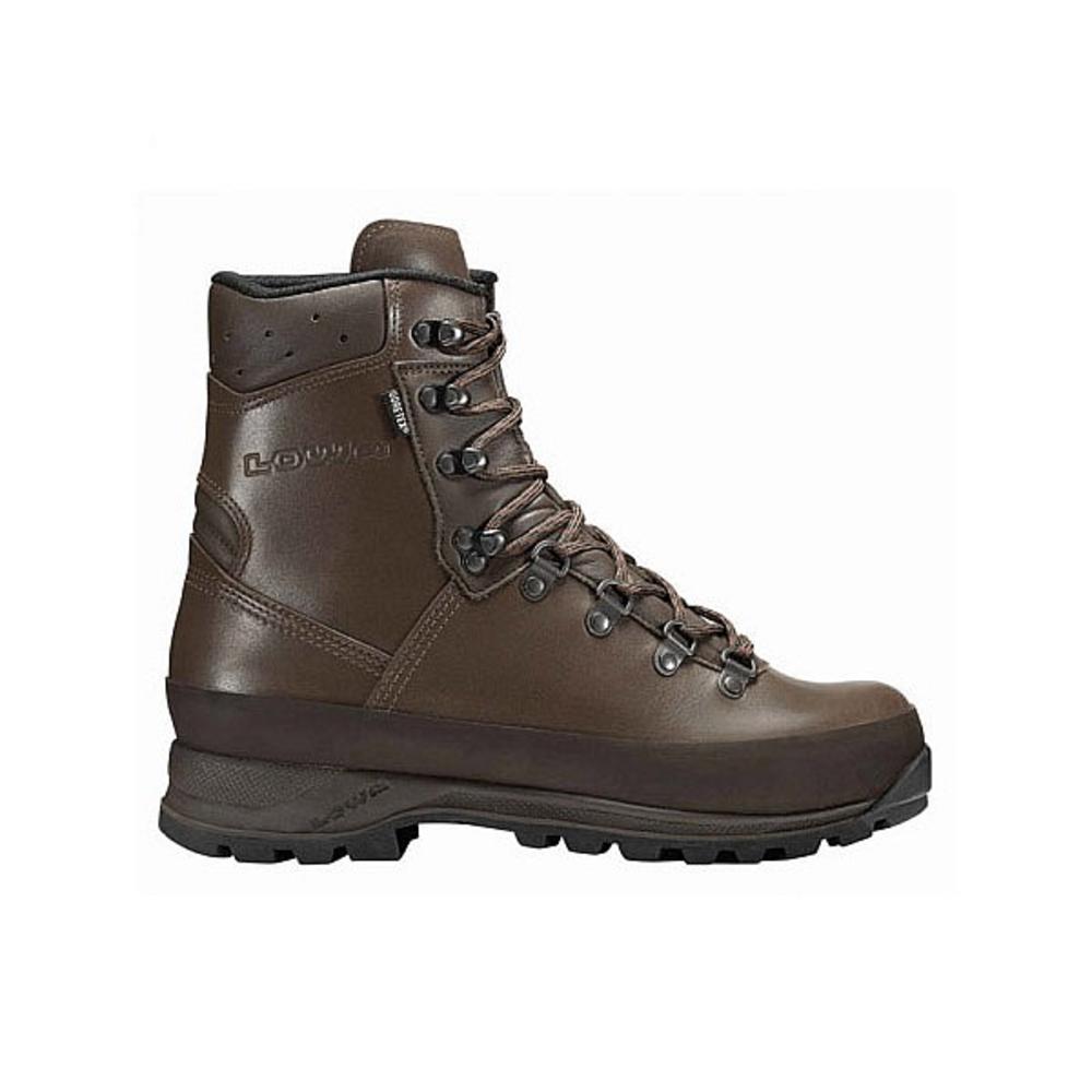 Lowa Mountain GTX Boots Brown