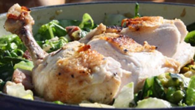 Chicken Recipes Uktv Food Appetizing Chicken Pedia