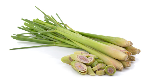 Image result for Lemongrass