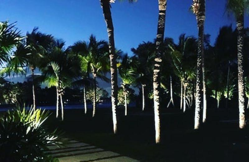 Reliable Property Services Landscape Lighting