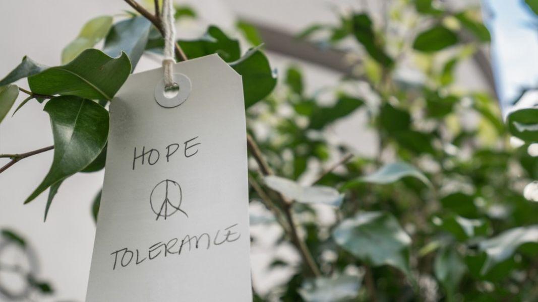 Yoko Ono: Wish Tree Garden