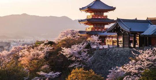 Halal Trip Japan Golden Long Weekend
