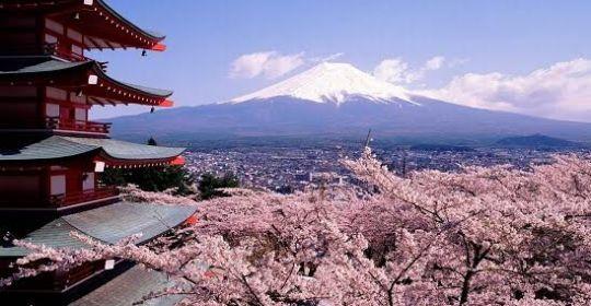 Halal Trip Japan Golden Long Weekend May
