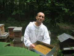 Un nouveau pollen : prolongez l'été