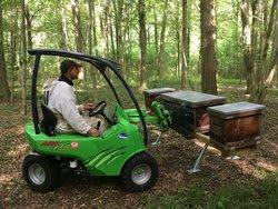 transhumance de ruches sur le Tilleul
