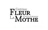 Château Fleur La Mothe