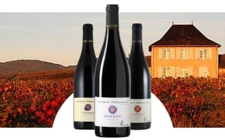 Vignobles Laurent Perrachon