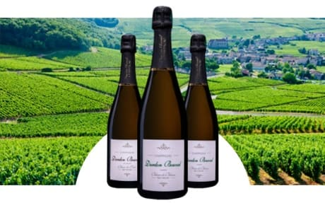 Champagne Durdon Bouval
