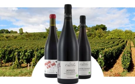 Famille Chasselay
