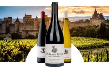 Pierre Tailleur de Vins