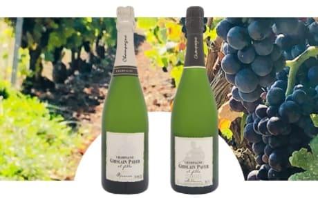 Champagne Ghislain Payer et Fille