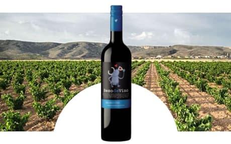 Bodega Grandes Vinos