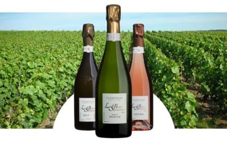 Champagne Le Brun-Servenay