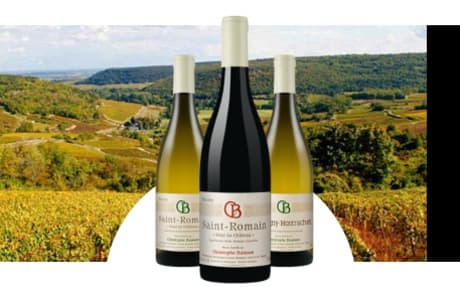 Domaine Christophe Buisson