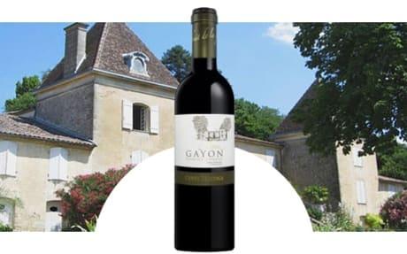 Château Gayon