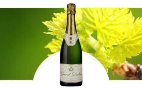 Champagne Gérard Dubois