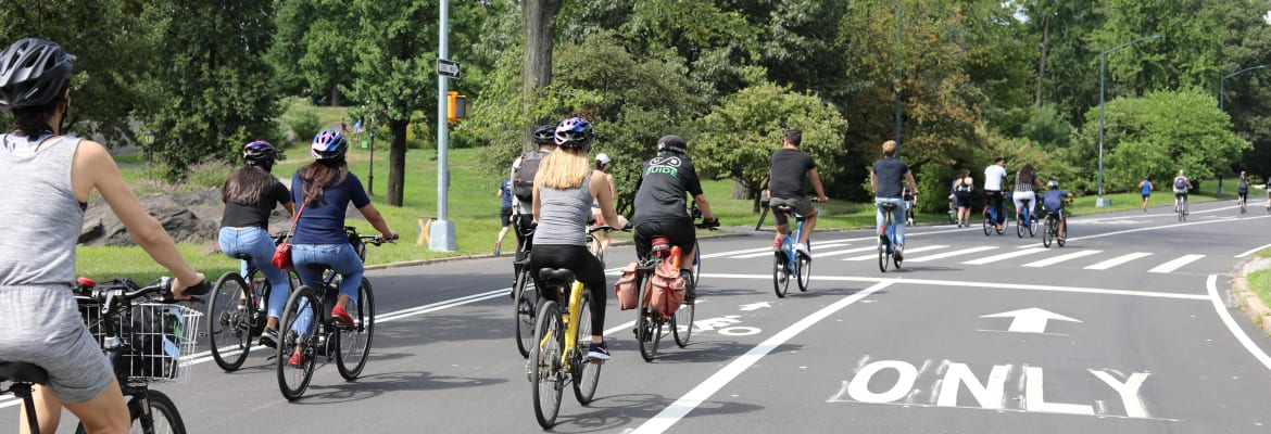 Highlights of Central Park Bike Tour - Unlimited Biking