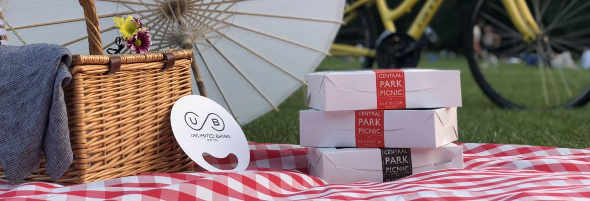 Central Park Picnic & Full Day Bike Rental 1