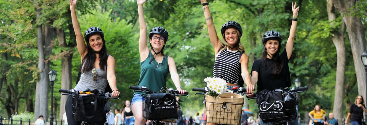 Central Park Picnic & Full Day Bike Rental 5