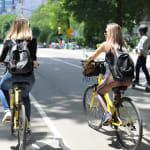 Central Park Picnic & Full Day Bike Rental 4