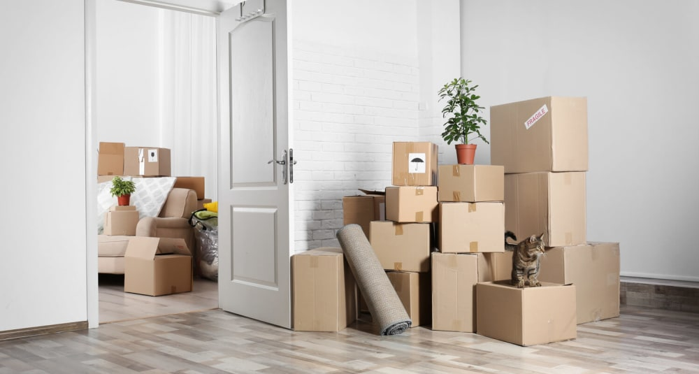 32 of the Best Moving Hacks We Could ...