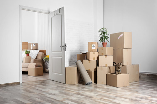 Items You Can't Put on a Moving Truck