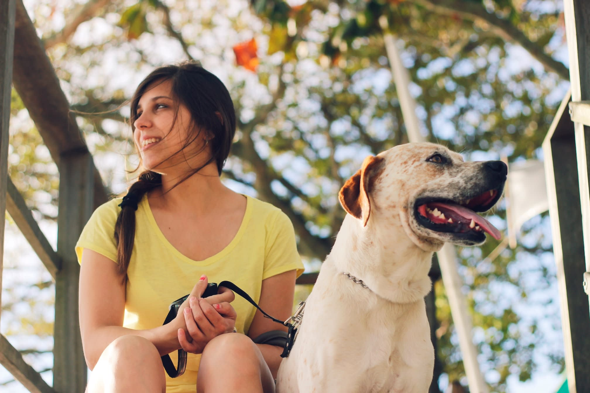 How to Find a Dog Walker in Your New Neighborhood
