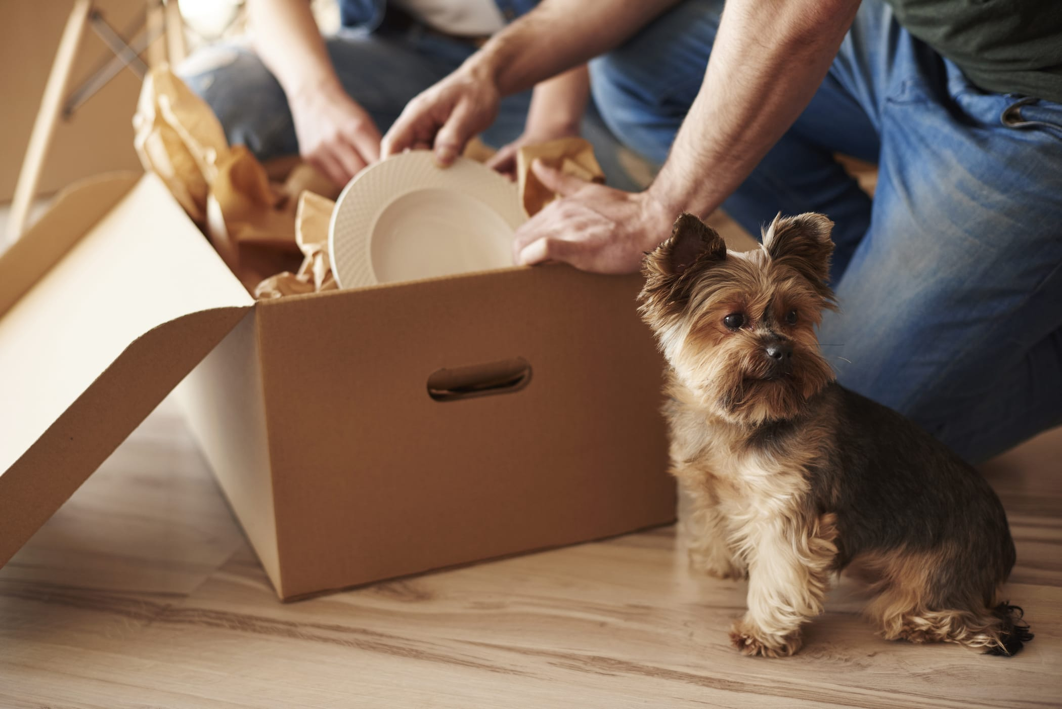 Here's What to Pack First When Moving