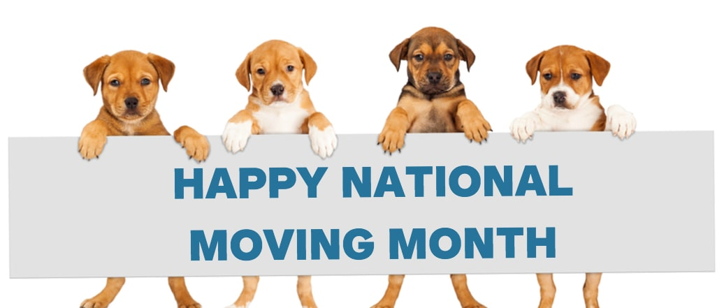 Happy National Moving Month - May 2017