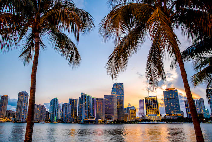 Best Moving Companies in Miami: A Guide