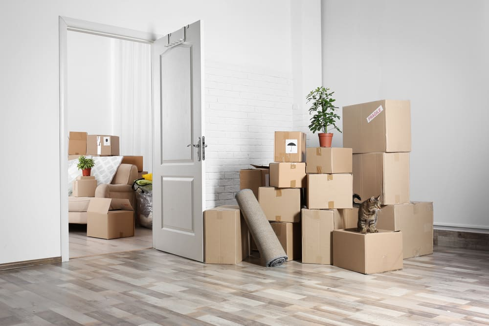 Packing to move: how many boxes do you need