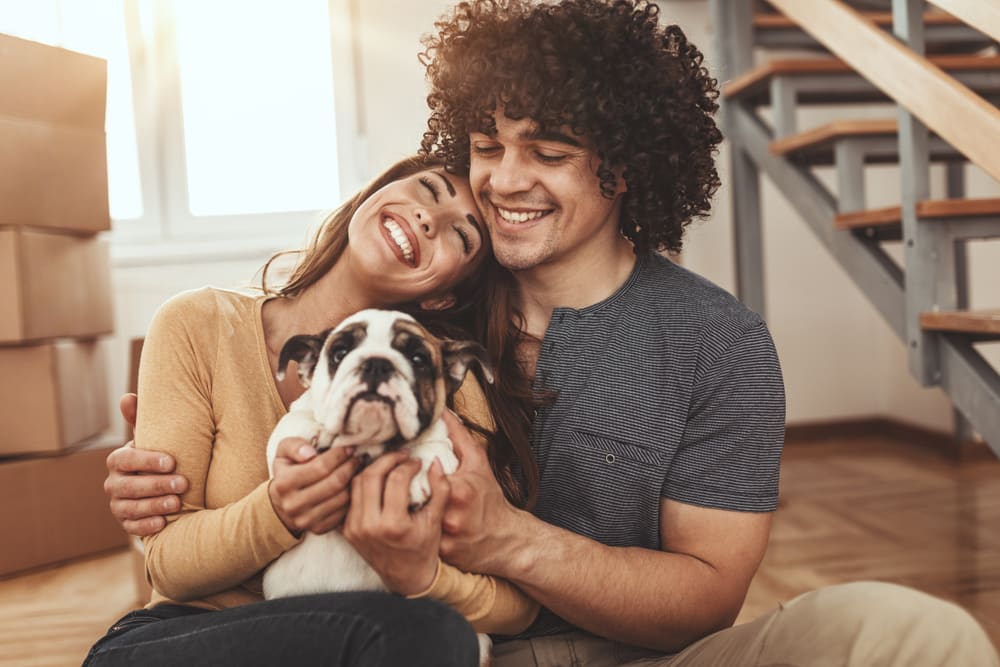 Young couple moving with pets