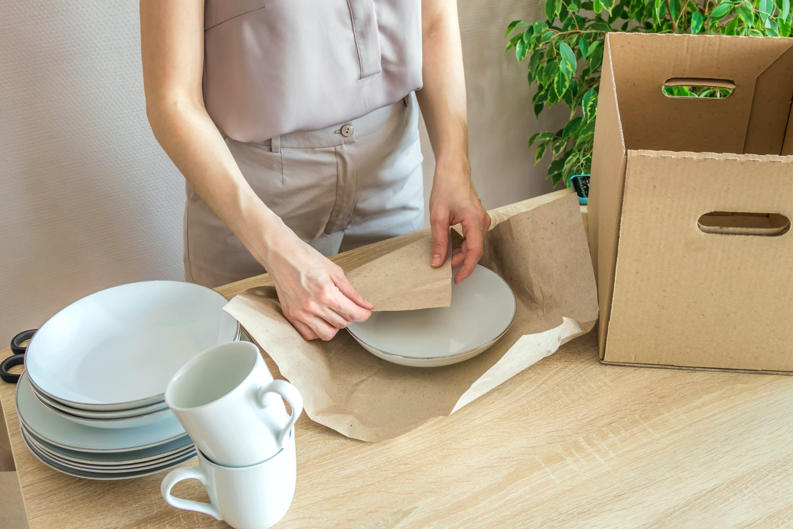 packing dishes