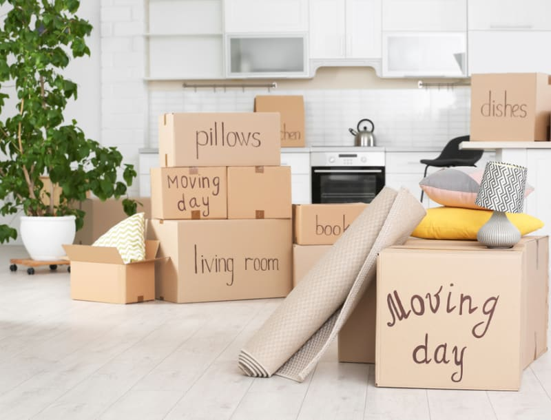 Moving Etiquette: 9 Tips to Help Your Moving Day Go More Smoothly
