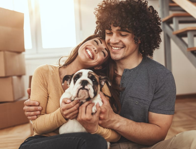 Moving With Pets: 7 Tips to Minimize Their Stress