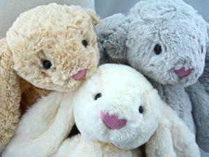 Buy teddie bunny